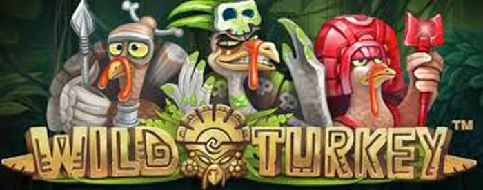 slot gratis wild turkey